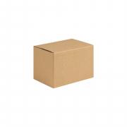 Corrugated Carton 21